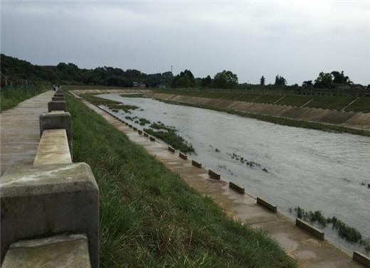 蒲江县西来镇蒲江河支流临溪河防洪治理工程